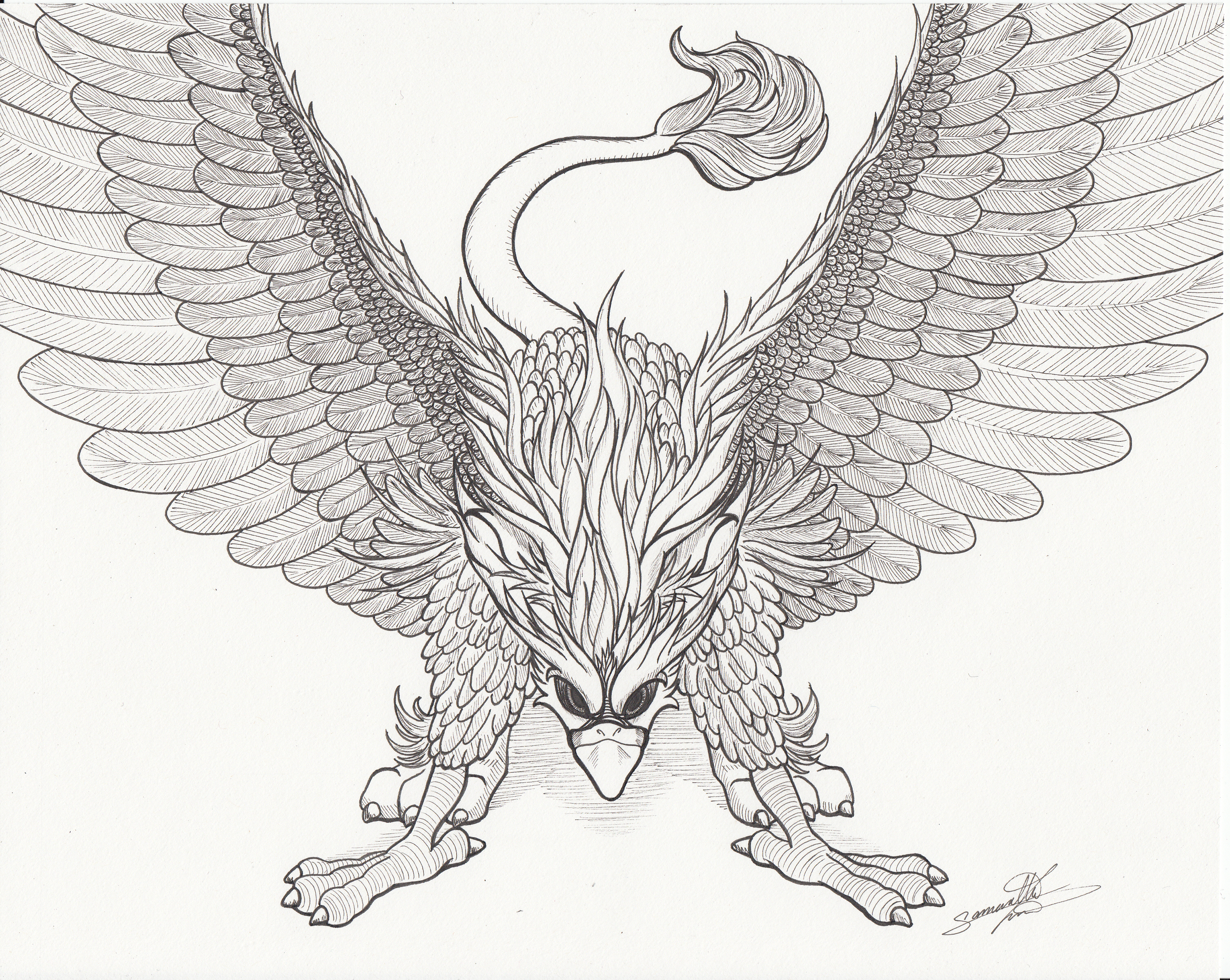 The Mighty Griffin